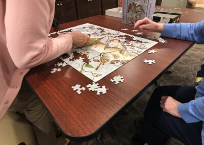 Puzzles-in-the-Library